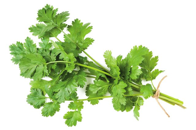 Eat&Drink_Ingredient_Cilantro_GETTY_rp0321.jpg