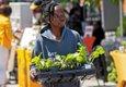 Feature_FarmersMarkets_RVABlackFarmers Market_17thSt_JAYPAUL_rp0621.jpg