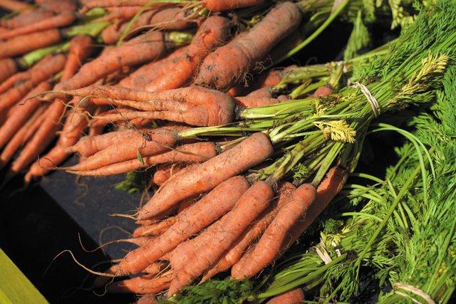 Feature_FarmersMarkets_RVABlackFarmers Market_17thSt3_JAYPAUL_rp0621.jpg