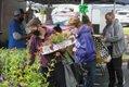 Feature_FarmersMarkets_WestEndFarmersMarket3_JAYPAUL_rp0621.jpg