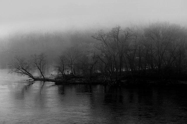 A&E_Nyerges,James River Fog 9996_PhotoAlexNyerges_rp0721.jpg
