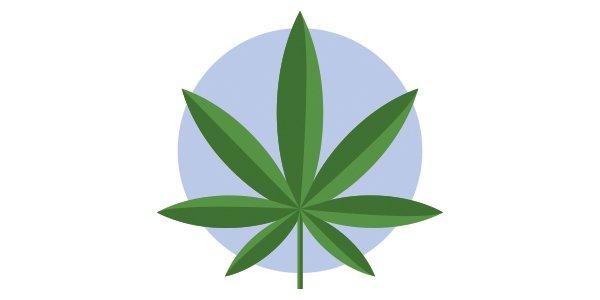 Local_News_Marijuana_GETTYIMAGES_rp0721.jpg