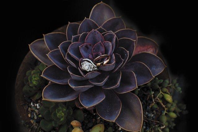wedding-rings_GettyImages-1317014806.jpg