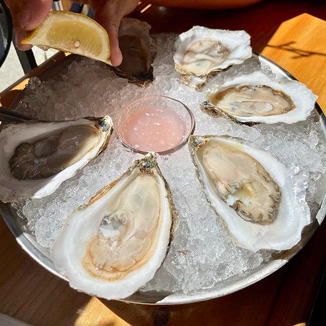 Oysters_Eileen-Mellon.jpg