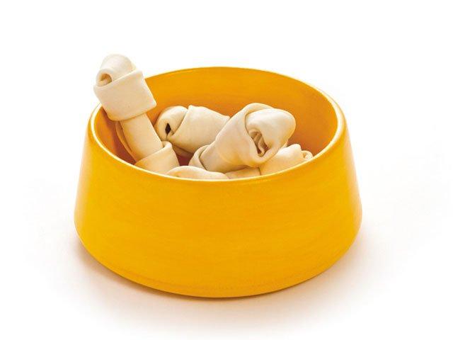 citrus-doggy-bowl.jpg