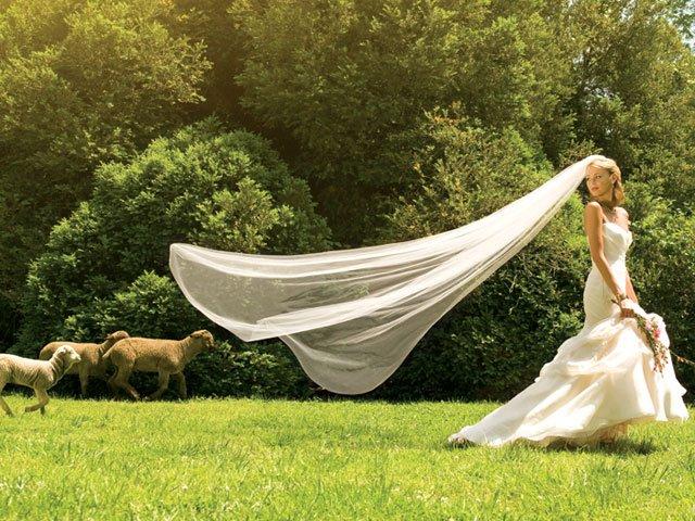 Feature_brideshoot17_bp0614.jpg