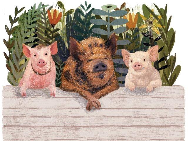 tucker-the-pig.jpg
