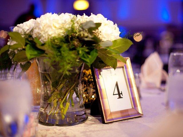 Wedding Crashers Photographer Photo