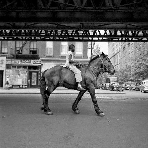 VM-horseman.jpg