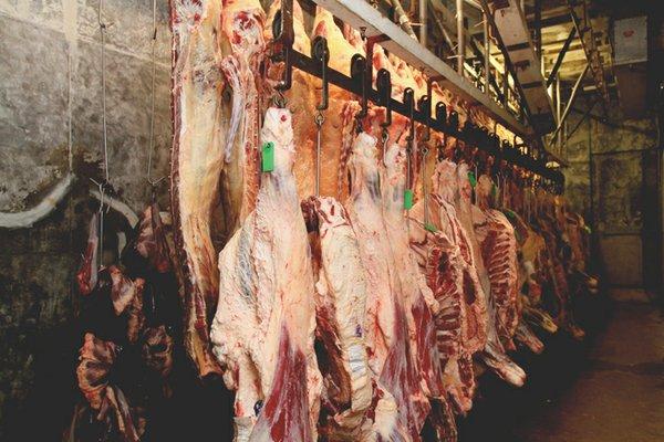 FoodChain_MeatStep4_rp0215.jpg