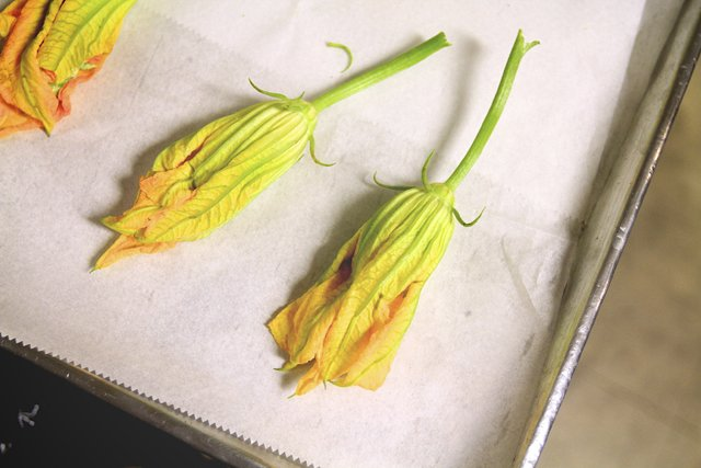 Stephanie Breijo Richmond Magazine Stuffed Squash Blossoms 006.jpg