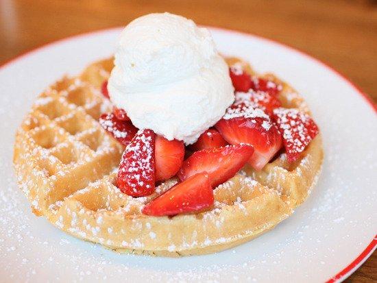 waffles.stephanie breijo.jpg